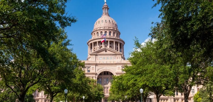 Pro-Life Priorities for the 87th Texas Legislature