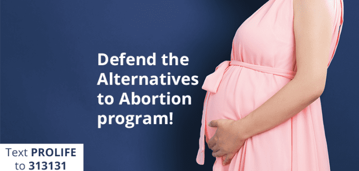 Alert! Pro-Abortion Rep. Trying to Cut Alternatives to Abortion