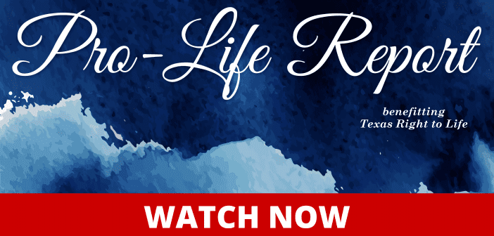 Pro-Life Report September 24, 2020