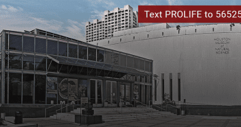 HMNS Body Worlds Exhibit Petition web image